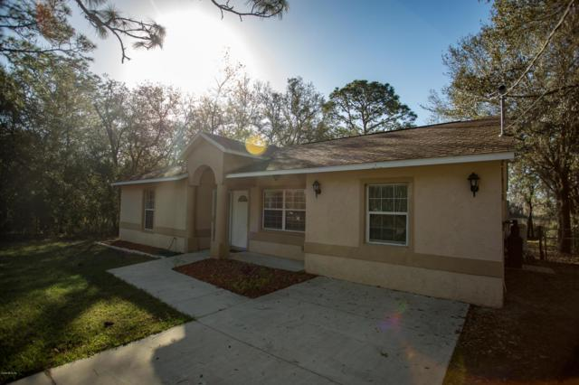 24122 SW Tiger Lake Boulevard, Dunnellon, FL 34431 (MLS #551522) :: Realty Executives Mid Florida