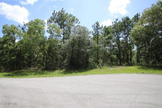 TBD SW 61st Circle, Ocala, FL 34476 (MLS #558246) :: Pepine Realty