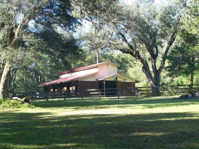 17650 NE 40th Street, Williston, FL 32696 (MLS #559338) :: Bosshardt Realty