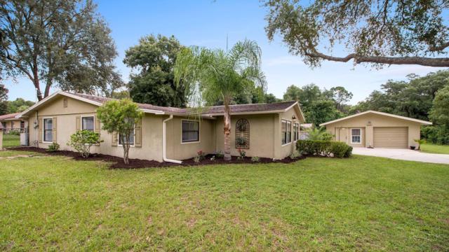 13349 SE 106th Terrace, Ocklawaha, FL 32179 (MLS #559470) :: Bosshardt Realty