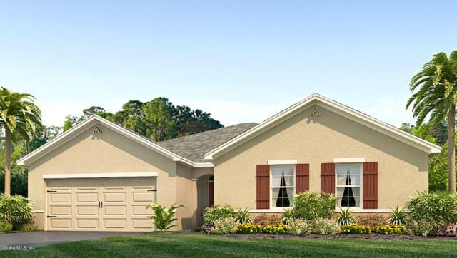 9768 SW 51st Avenue, Ocala, FL 34476 (MLS #559732) :: Pepine Realty