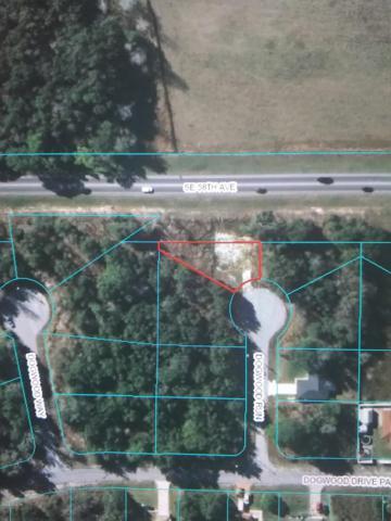 8 Dogwood Run, Ocala, FL 34472 (MLS #560117) :: Realty Executives Mid Florida