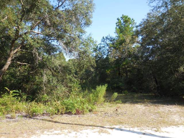 8231 NE 118th Lane, Bronson, FL 32621 (MLS #562988) :: Bosshardt Realty