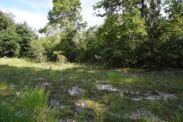 3100 SE 162nd Court, Ocklawaha, FL 32179 (MLS #563966) :: Bosshardt Realty