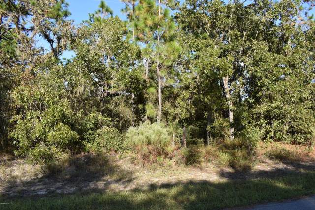 9319 N Samoa Way, Citrus Springs, FL 34433 (MLS #564241) :: Bosshardt Realty