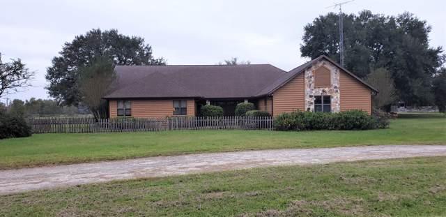 1001 NE 105th Lane, Anthony, FL 32617 (MLS #566076) :: Bosshardt Realty
