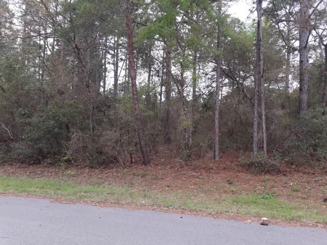 8832 N Raidin Drive, Citrus Springs, FL 34433 (MLS #569061) :: Pepine Realty