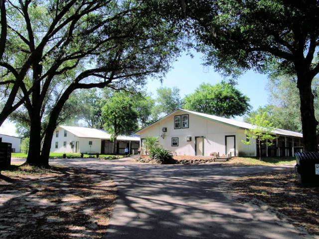 17520 NW 120 Terrace, Reddick, FL 32686 (MLS #422382) :: Bosshardt Realty