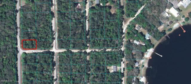 00 NE 110 Avenue, Fort Mccoy, FL 32134 (MLS #504752) :: Bosshardt Realty