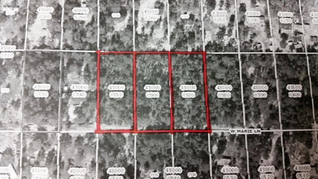 6891 W Mable Lane, Dunnellon, FL 34433 (MLS #524696) :: Bosshardt Realty