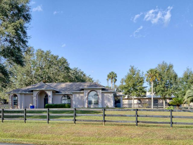 5861 NW 96th Lane, Ocala, FL 34482 (MLS #528343) :: Bosshardt Realty