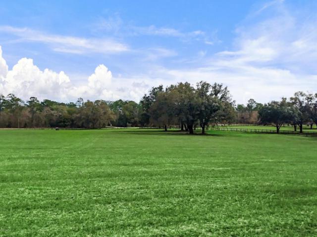 TBD NE 150th Ave, Williston, FL 32696 (MLS #530791) :: Bosshardt Realty