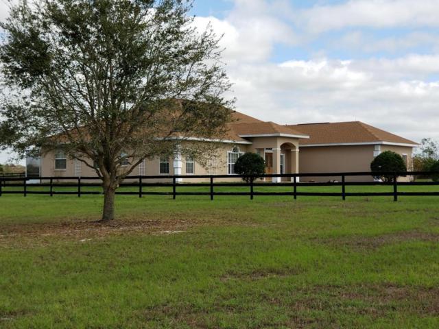 5201 SW 90 Lane, Ocala, FL 34476 (MLS #532398) :: Bosshardt Realty