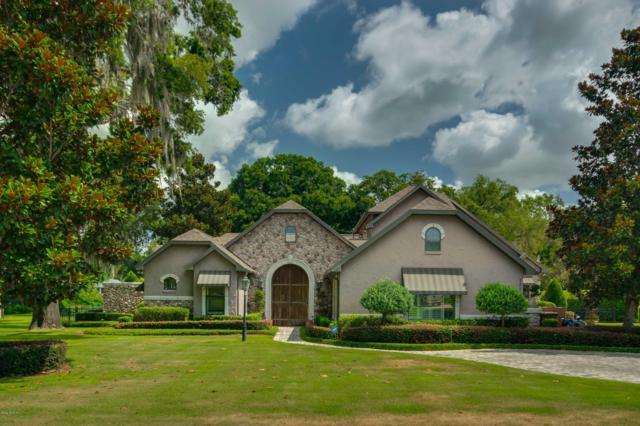 2801 SE 29th Street, Ocala, FL 34471 (MLS #538767) :: Bosshardt Realty