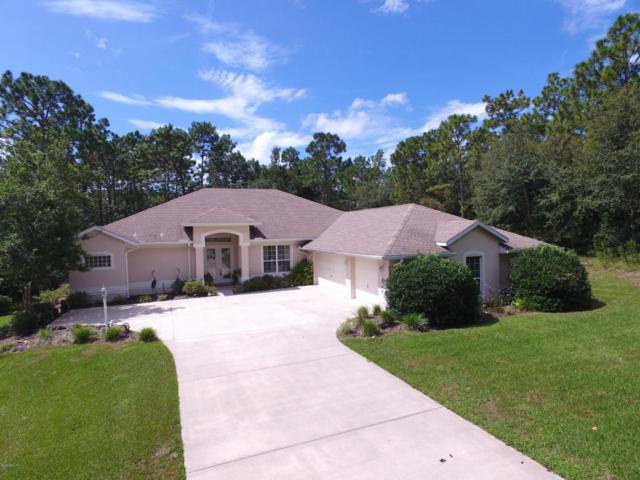 9215 SW 197th Circle, Dunnellon, FL 34432 (MLS #541093) :: Realty Executives Mid Florida