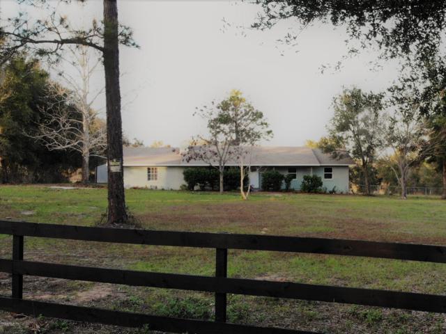 15321 SE 99th Place, Ocklawaha, FL 32179 (MLS #543413) :: Bosshardt Realty