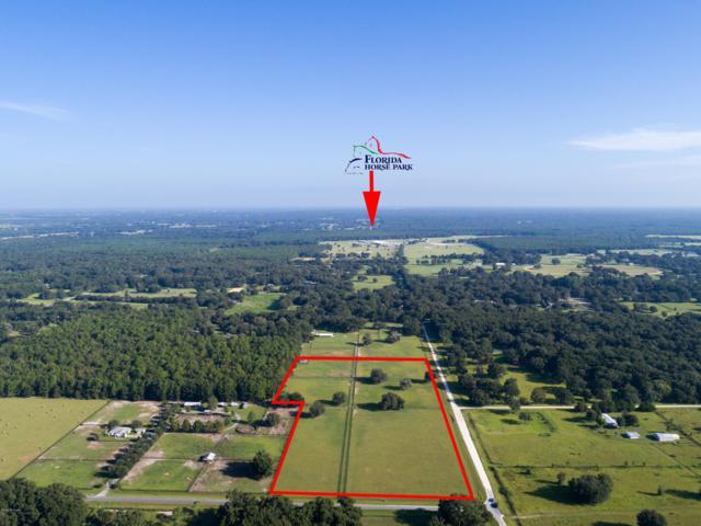 00 SW 128 Lane, Ocala, FL 34473 (MLS #543459) :: Realty Executives Mid Florida
