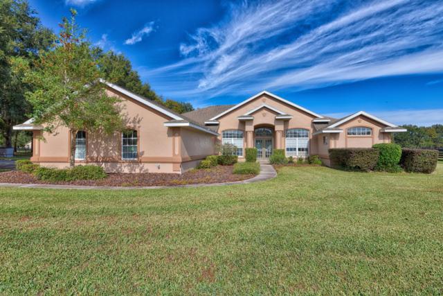 15995 NW 10th Circle, Citra, FL 32113 (MLS #543507) :: Bosshardt Realty