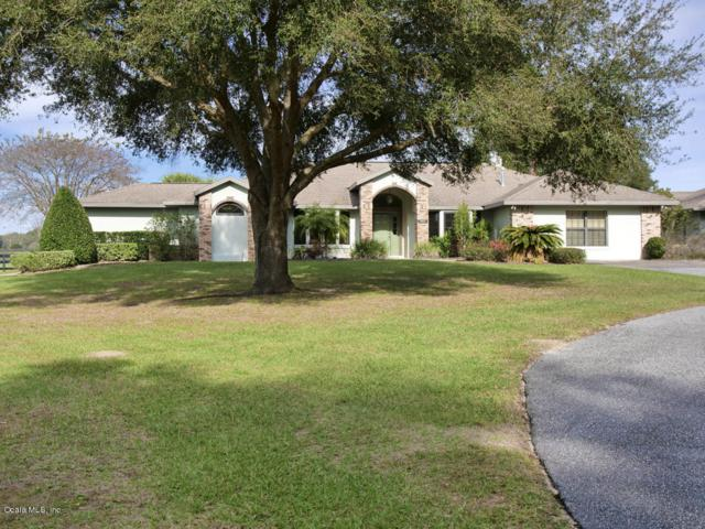 1461 NW 114th Loop, Ocala, FL 34475 (MLS #546563) :: Pepine Realty