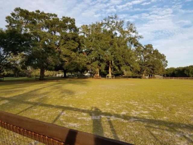 0 SW 86th Lane, Ocala, FL 34476 (MLS #547173) :: Realty Executives Mid Florida