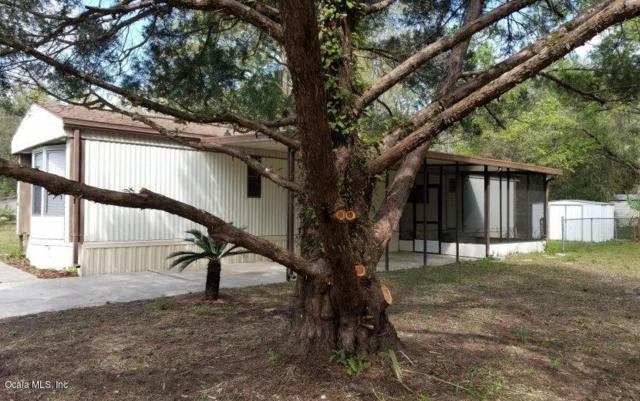 8575 SE 175TH Court, Ocklawaha, FL 32179 (MLS #550369) :: Bosshardt Realty