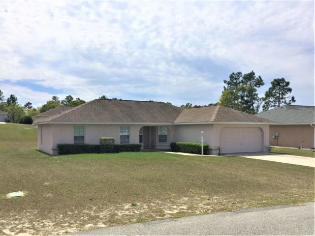 8428 SW 136th Place, Ocala, FL 34473 (MLS #551497) :: Thomas Group Realty