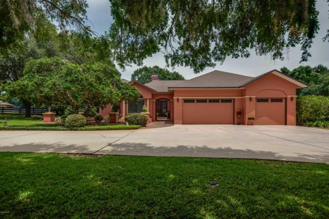 8355 SE 7th Avenue Road, Ocala, FL 34480 (MLS #558182) :: Bosshardt Realty