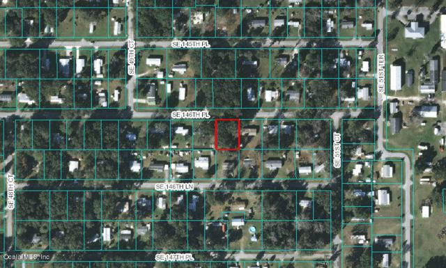5030 SE 146th Place, Summerfield, FL 34491 (MLS #542010) :: Realty Executives Mid Florida
