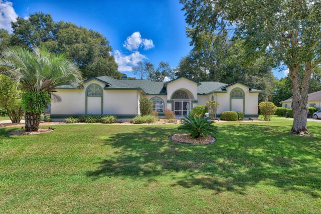 10081 SW 74th Terrace, Ocala, FL 34476 (MLS #542694) :: Pepine Realty