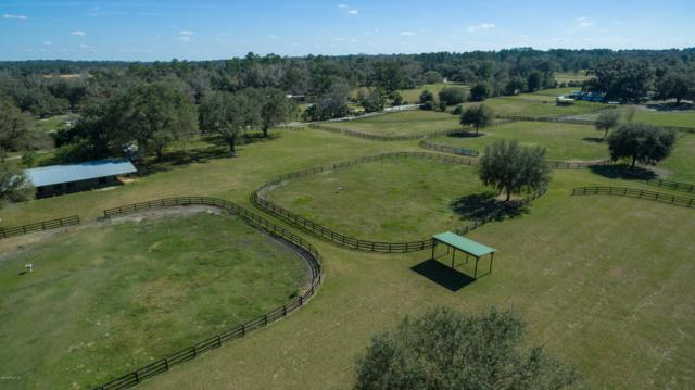 7900 NW 118th Court, Ocala, FL 34482 (MLS #547469) :: Bosshardt Realty