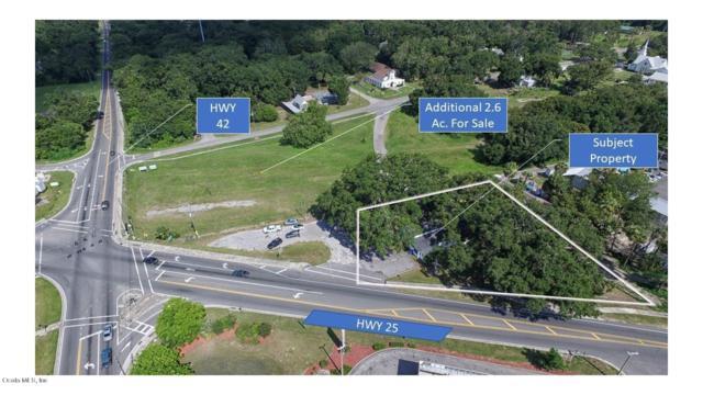 16445 SE 138th Terrace, Weirsdale, FL 32195 (MLS #536428) :: Bosshardt Realty