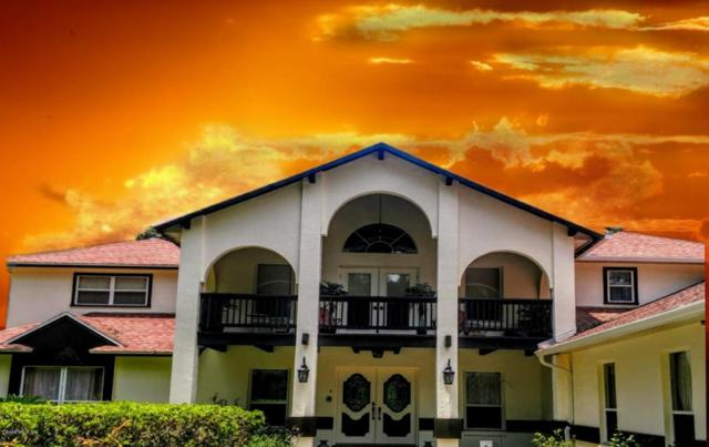 3650 SW 24 AVE Road, Ocala, FL 34471 (MLS #538429) :: Bosshardt Realty