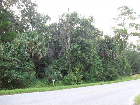 0 N Highway 329, Micanopy, FL 32667 (MLS #520812) :: Bosshardt Realty