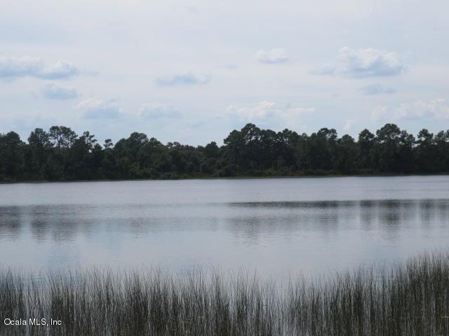 0 Maluaka Radial, Ocklawaha, FL 32179 (MLS #521585) :: Realty Executives Mid Florida