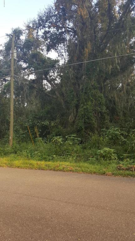 0 Juniper Trail, Ocala, FL 34480 (MLS #524393) :: Realty Executives Mid Florida