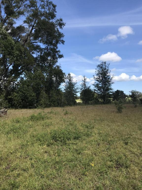 0 SW 36th St, Dunnellon, FL 34432 (MLS #526052) :: Realty Executives Mid Florida
