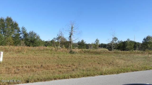 Lot 13 SW 134th Loop, Ocala, FL 34473 (MLS #527451) :: Realty Executives Mid Florida