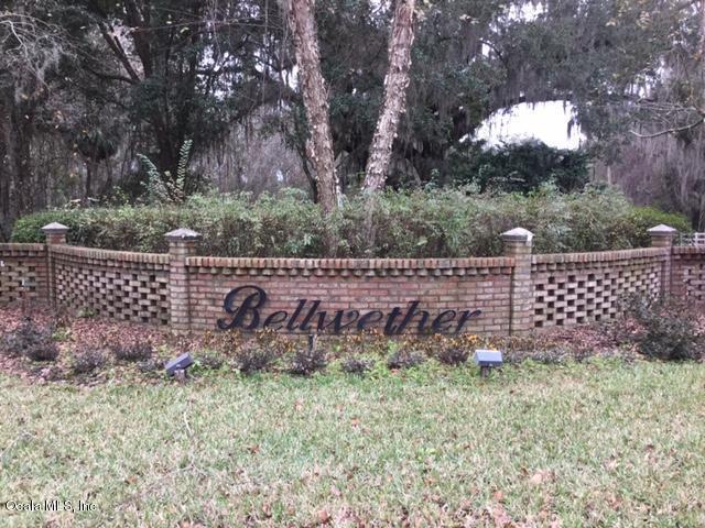 0 SW 37 Place Road, Ocala, FL 34474 (MLS #529615) :: Bosshardt Realty