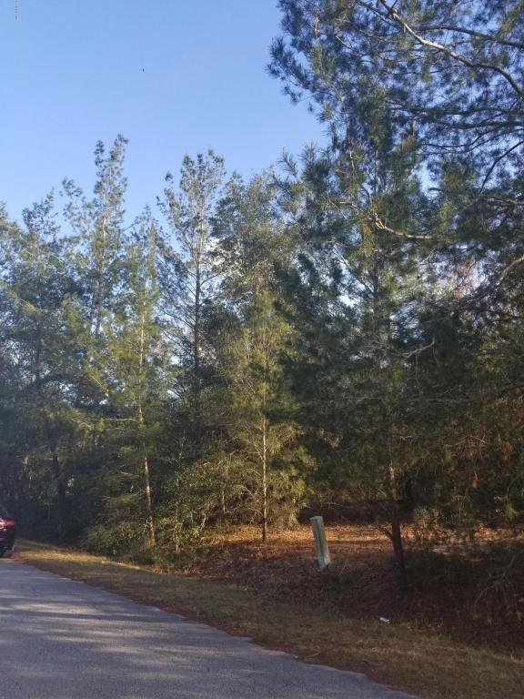 0 SE 108th Place, Belleview, FL 34420 (MLS #529941) :: Realty Executives Mid Florida