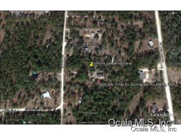 0 SW 171ST Court, Dunnellon, FL 34432 (MLS #530106) :: Realty Executives Mid Florida