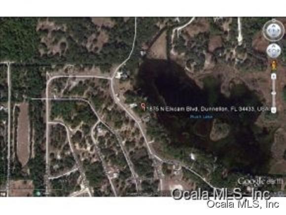 11875 N Elkcam Boulevard, Dunnellon, FL 34432 (MLS #530109) :: Realty Executives Mid Florida