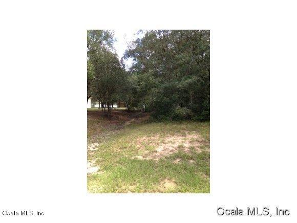 0 SE 169 Ave Road, Ocklawaha, FL 32179 (MLS #530182) :: Realty Executives Mid Florida