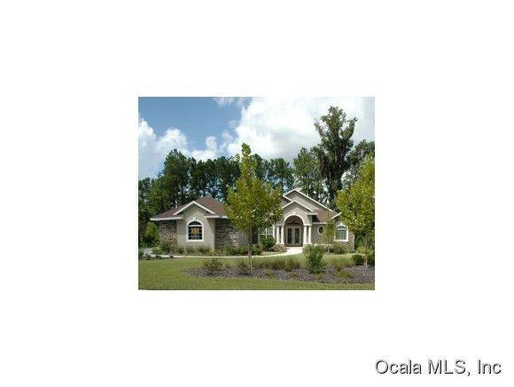 561 SE 42nd Street, Ocala, FL 34480 (MLS #530326) :: Pepine Realty
