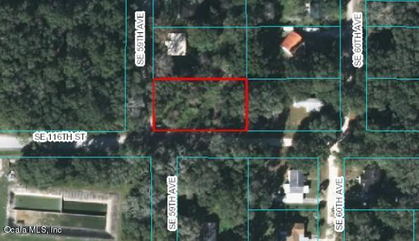 5955 SE 116th Street, Belleview, FL 34420 (MLS #530741) :: Bosshardt Realty