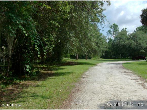 000 Cr-316, Fort Mccoy, FL 32134 (MLS #532421) :: Bosshardt Realty