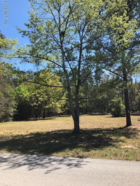 0 SW Audubon Avenue, Dunnellon, FL 34431 (MLS #533156) :: Realty Executives Mid Florida