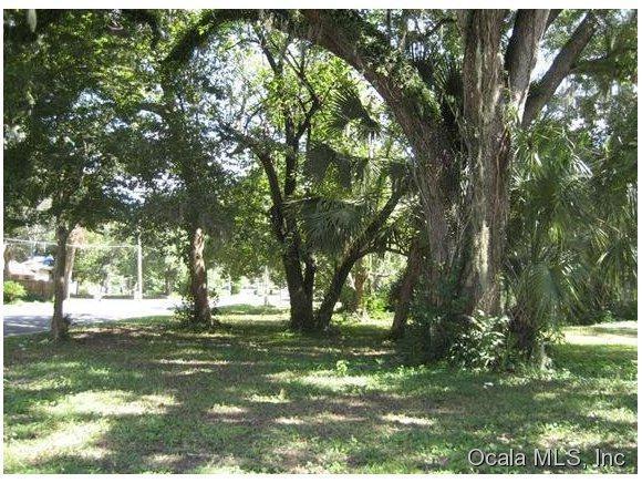 949 NE 2nd Street, Ocala, FL 34470 (MLS #533345) :: Bosshardt Realty