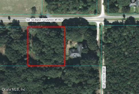 TBD SE Sunset Harbor Road, Summerfield, FL 34491 (MLS #534193) :: Thomas Group Realty