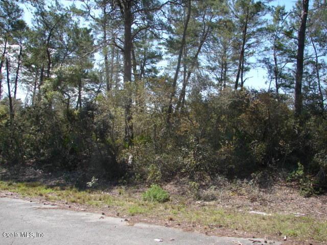 0 Sequoia Trail Way, Ocklawaha, FL 32179 (MLS #534352) :: Bosshardt Realty