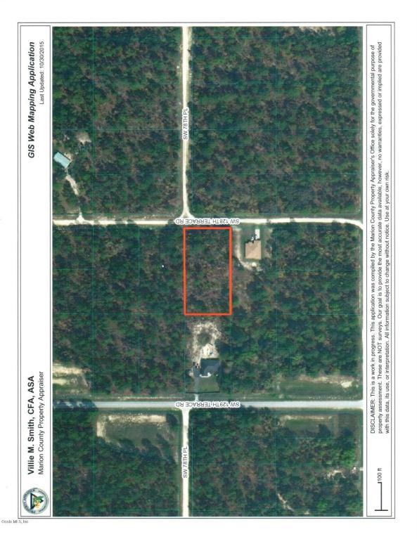 7866 SW 128th Ter Road, Dunnellon, FL 34432 (MLS #534596) :: Pepine Realty